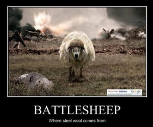 Humor Quotes. Funny. Sheep. Animals.