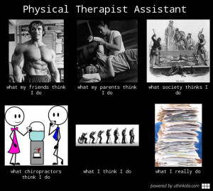 physical therapist assistant meme pta meme