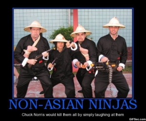 Motivational Pictures – Chuck Norris vs. Ninjas
