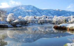 ... nature winter snow trees bridges scenic rivers reflections 2560x1600 w