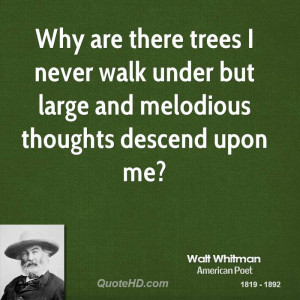 Why are there trees I never walk under but large and melodious ...