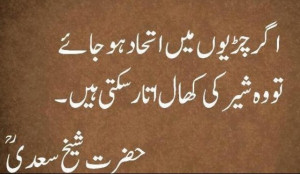 Sheikh Saadi Best Urdu Quotes Haqayat
