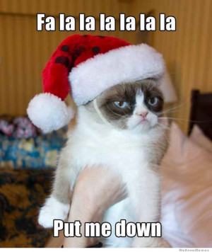 10 Best Grumpy Cat Christmas memes – We all know someone who is ...