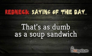 redneck #hick #hillbilly #quotes #sayings #southern #Hickapedia http ...
