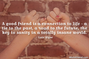 friendship-A good friend is a connection to life - a tie to the past ...