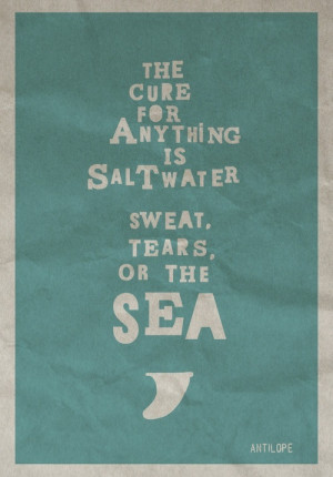 Surf quotes and inspirations /