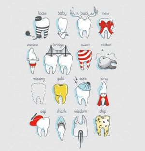 Types of teeth…