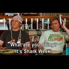 stepbrothers quotes more stepbrothers quotes show movie movies man ...