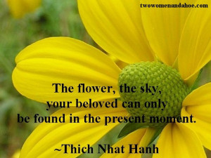 the flower quote flowers quotes beauty gardening quotes