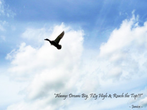 ... up always dream big fly high and reach the top my quote of the day