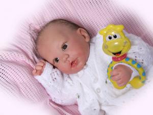 reborn babies baby dolls