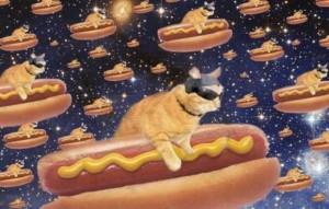 Gonna get a hot dog!! Disco fool!!
