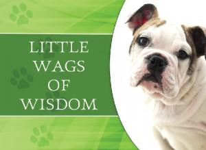 Little Wags Of Wisdom (LIFE'S LITTLE BOOK OF WISDOM)