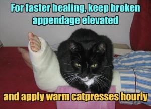 funny broken leg