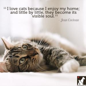 Cat Love Quotes Jean Cocteau cat quote