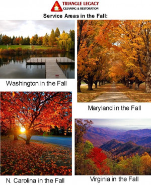 Triangle Legacy Service Areas in the Fall! Call today for your Free ...
