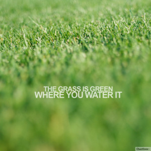 """The grass is green where you water it."""""""