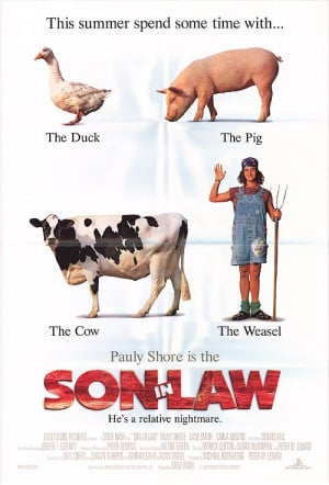 SON IN LAW POSTER ]