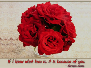 If I Know What Love Is, It Is Because Of You Red Roses Love Quote