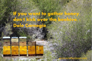 Dale Carnegie beehive quote