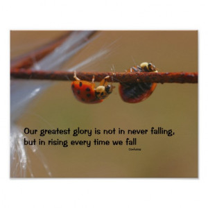 Ladybugs Attitude Quote Inspirational Poster