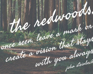 ... mark or create a vision that stays with you always. John Steinbeck