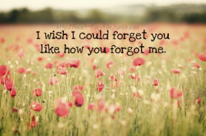 ... 500 heart fairytale: I wish I could forget you like how you forgot