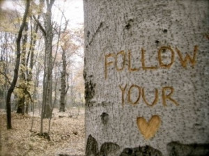 forest, heart, inspiration, love, love couple, nature, quote, quotes ...