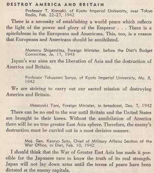 Actual Japanese Quotes About the War