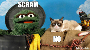 Oscar the Grouch and Grumpy Cat Finally Meet in Epic Face-Off [VIDEO]