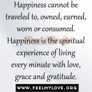 Happiness-cannot-be-traveled-to-owned-earned-worn-or-consumed ...