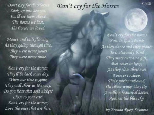 This poem tells us to not cry for the loss of our horses, but after ...