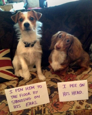 Return to Funny Pictures – 42 Pics