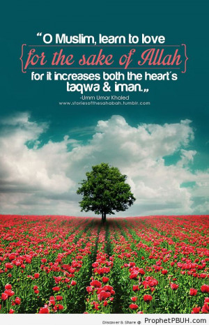 Friends are but gifts from... - Islamic Quotes, Hadiths, Duas ← Prev ...