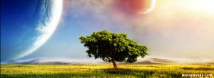 Beautiful Tree FB cover