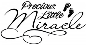 Precious-Little-Miracle-Baby-Decor-vinyl-wall-decal-quote-sticker ...