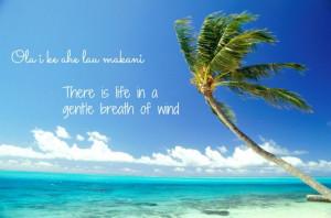 soulsurferstudio Hawaiian Proverb