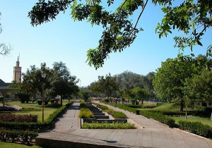 The beautiful garden at the palace features a diversity of trees and ...