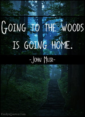 emilysquotes com going to the woods is going home