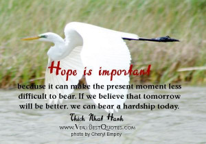 Thich nhat hanh hope quotes hope is important because it can make the ...