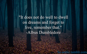 Harry Potter Sayings And Memorable Quotes (29)