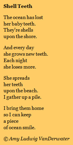 Shell Teeth - THE PRIVATE EYE