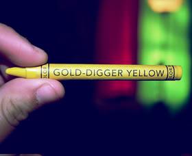 Gold Digger Quotes & Sayings