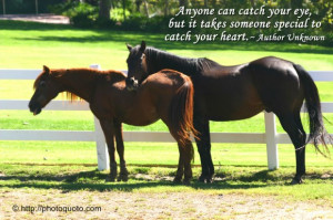 Anyone can catch your eye, but it takes someone special to catch your ...