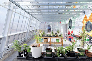 Alice Water, 温室 Greenhouses, Schoolyard Projects, Glasshouse, 216 ...
