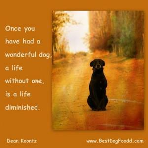 dog-death-quotes.jpg