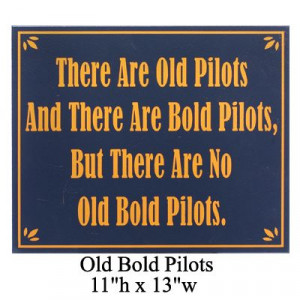 Good-Natured Aviation Signs - Sporty's Wright Bros