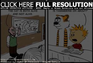schrodingers cat comic