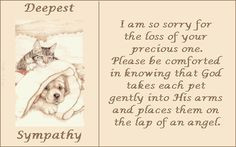 Sympathy Quotes | Sympathy For The Loss Of Your Pet Image | Sympathy ...