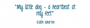 Inspirational Dog Quote #2